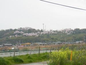 Srimg0061